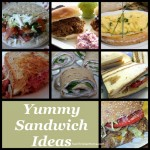 Sandwich Recipes & Ideas – Great for fast meals, snacks….even breakfast!