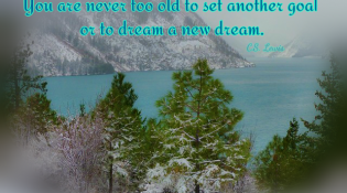 never-too-old-to-dream