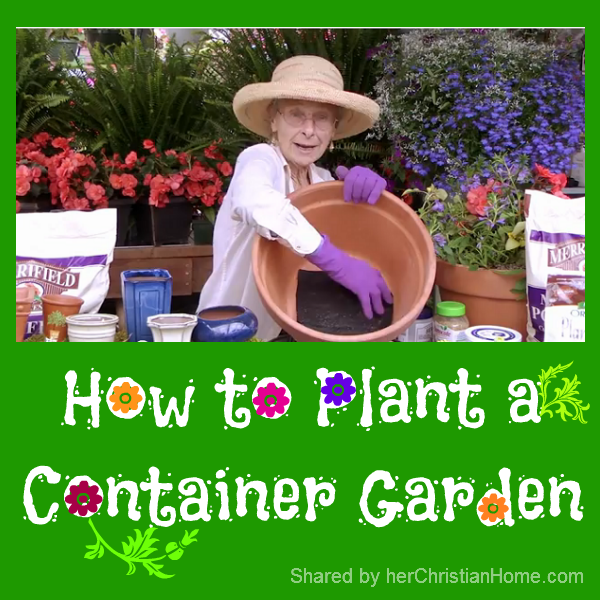 how-to-plant-container-garden