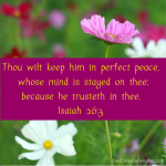 Isaiah 26:3 – Thou Wilt Keep Him in Pefect Peace – Weekly Memory Verse
