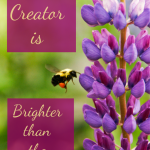 The Creator is Brighter than the Creation