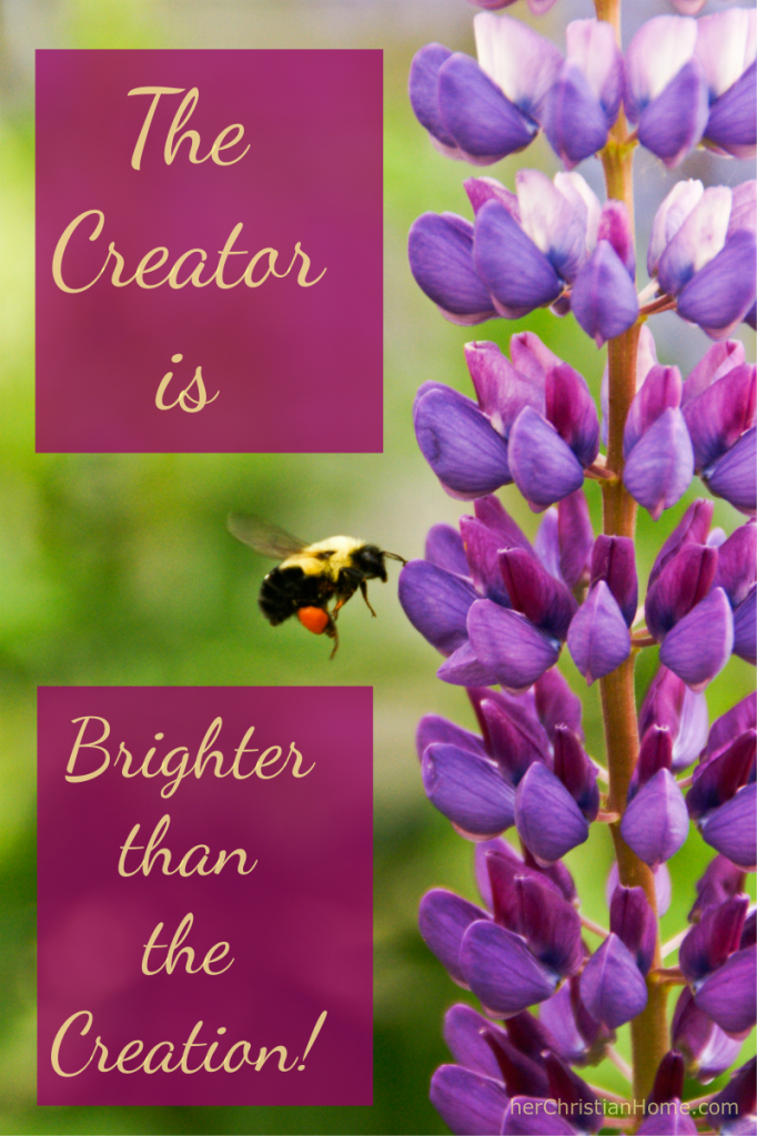 the-Creator-quote