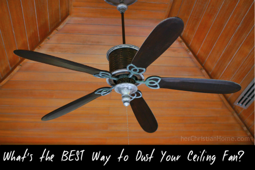 Whats the best way to dust your ceiling fan herchristianhome whats best way dust ceiling fan aloadofball Images
