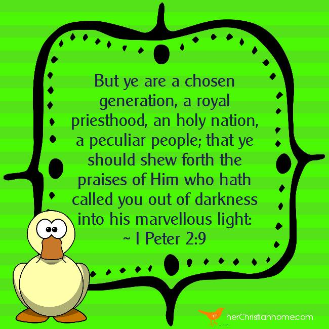 But ye are a chosen generation I Peter 2 9