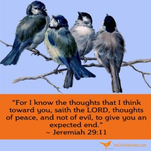 For I know the thoughts that I think toward you Jeremiah 29 11 - birds on tree branch image