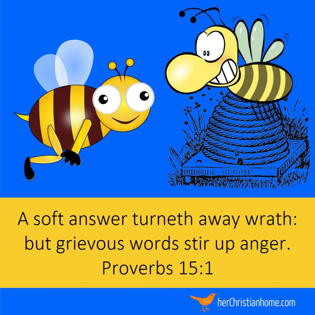 A soft answer turneth away wrath: but grievous words stir up anger. Proverbs 15:1 KJV #bibleverses #proverbs #devotional