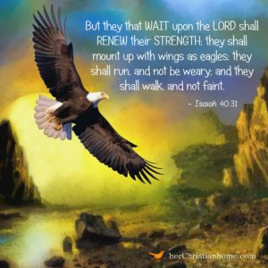 But they that wait upon the Lord Isaiah 40:31 KJV #bibleverses #isaiah #eagle