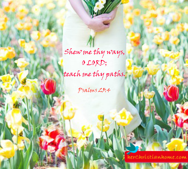 shew-me-thy-ways-psalms-25-4