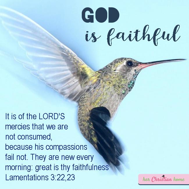 Even When We Fail, God is Still Faithful