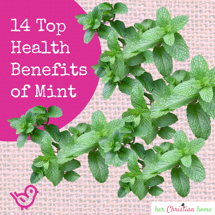 14 Top Health Benefits of Mint #naturalhealthalternatives #mint