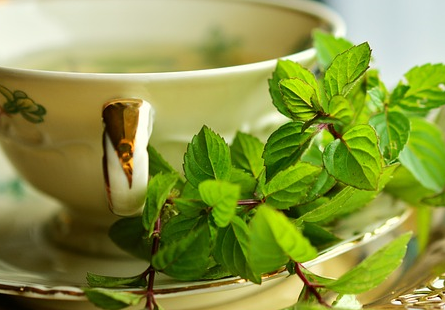 mint keeps your mouth healthy