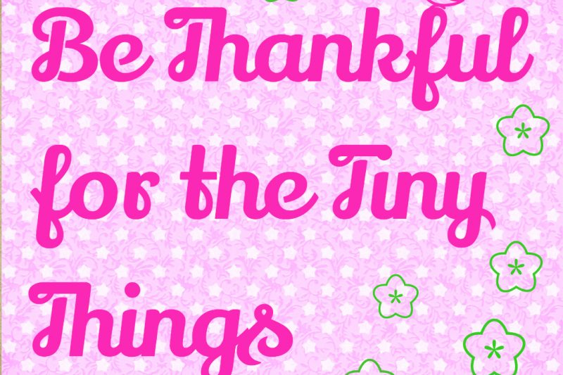 Be thankful for the tiny things