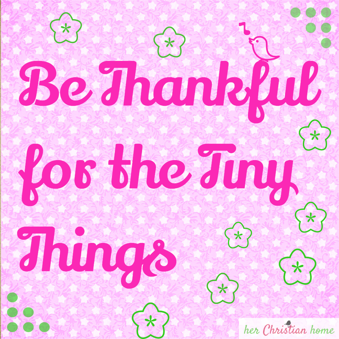 Day 13 – Be Thankful for the Tiny Things