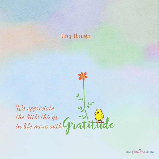 Be grateful for the Tiny Things