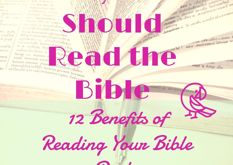 Why You Should Read the Bible #devotionalsforwomen