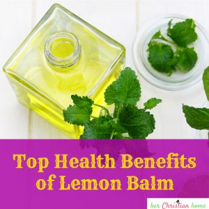 Top Health Benefits of Lemon Balm #herbs #mint #healtharticles