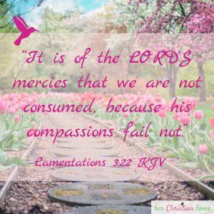 The Lords Mercies Lamentations 3 22 kjv