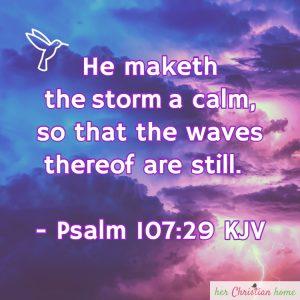 He maketh the storm a calm Psalm 107:29 KJV
