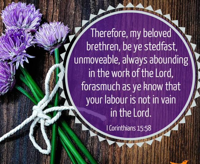 Be ye steadfast I Corinthians 15:58 KJV bible verse