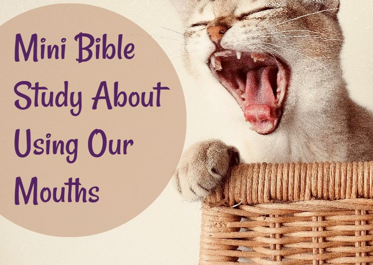 Title: Mini Bible Study About Using Our Mouths - Picture with cat yawning