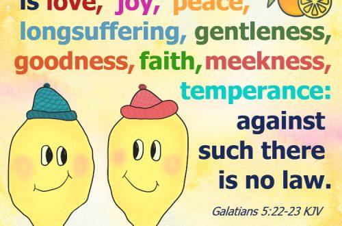Fruit of the Spirit Bible Verse Image Galatians 5:22,23 KJV