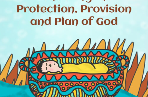 Protection, Provision, Plan of God KJV Devotional