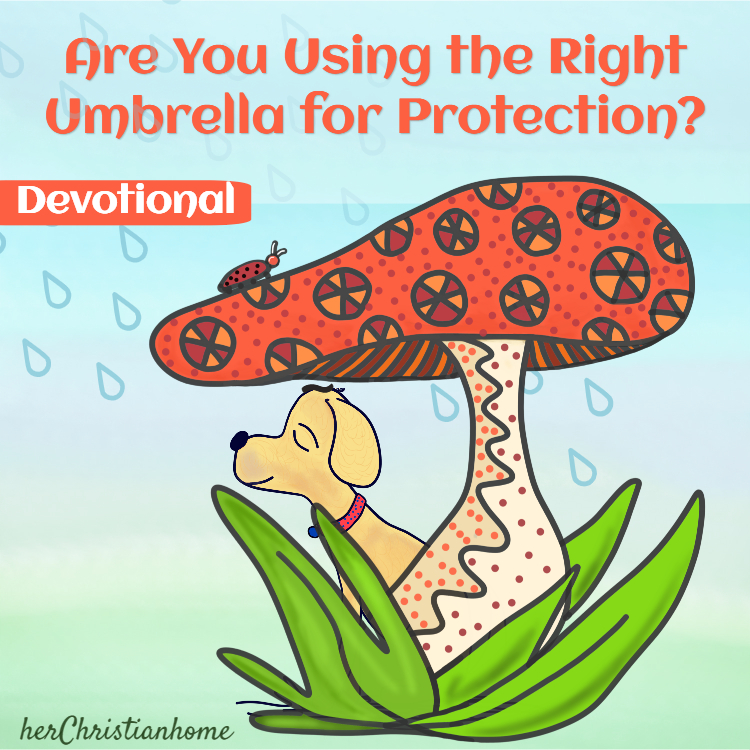 Are you using the right umbrella for protection - title image for kjv devotional for women
